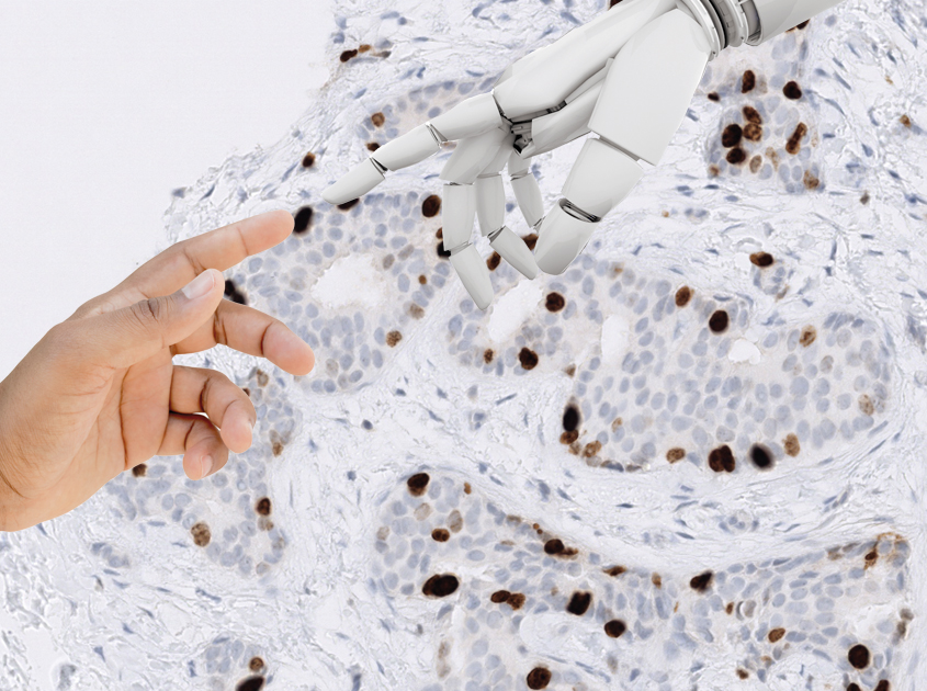 Human hand meets machine hand while using the PathoZoom Diagnostic Assistant