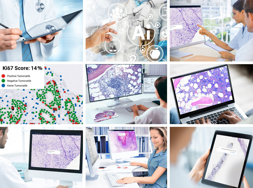 Collage of the application possibilities of PathoZoom in the laboratory, in the home office, in branch offices and on the road
