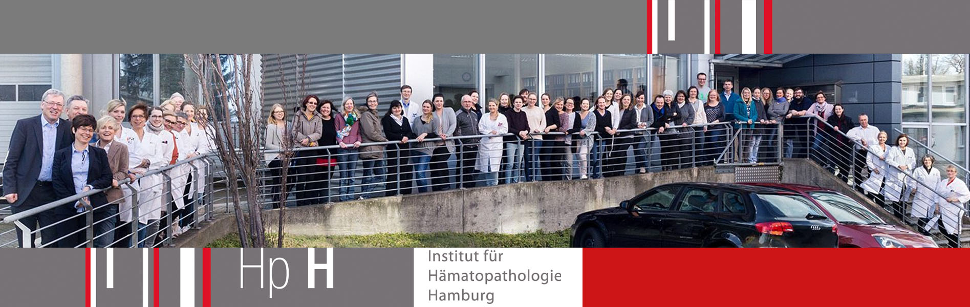 Team Institute Hematopathology Hamburg