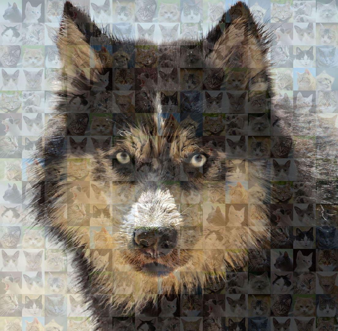 Collage Giga Collage Maker EasyZoom